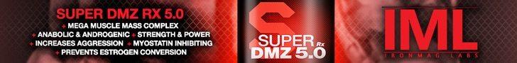 SDMZ5-728x90