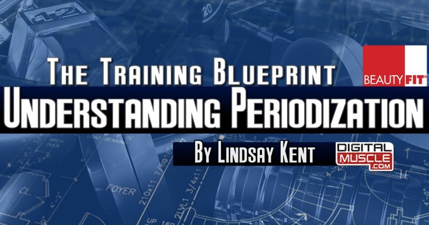Understanding periodization the training blueprint digitalmuscle understanding periodization the training blueprint malvernweather Choice Image