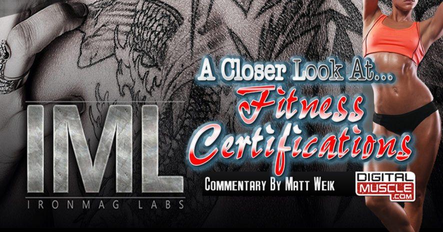 Fitness Certifications: A Closer Look   DigitalMuscle.com ...