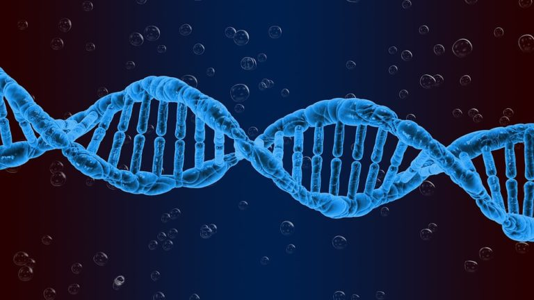 Exercise for your DNA